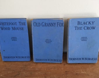 Vintage 1920 Thornton W. Burgess Green Meadow-Green Forest Series-Blue Book Stack