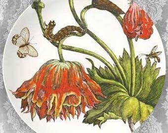 1600's botanical VII melamine plate