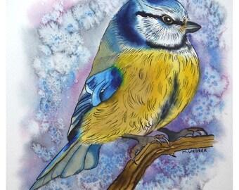 Blue Tit, Original painting