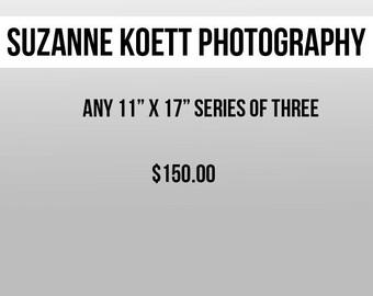 """Any three 11"""" x 17"""" Photographs"""