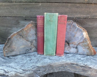 Vrizona Petrified Wood Bookends, Triassic Period, Home Decor, Library, Office Decor, Book Ends