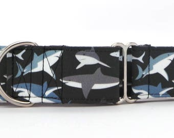 Shark Mob BLACK Pet Collar (Martingale, Buckle, or Tag)