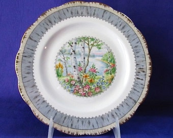 Royal Albert Silver Birch Salad Plate