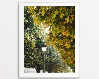 Autumn in Paris, Paris Photography, Paris Wall Art, Paris Photography, Paris Bedroom Decor, Paris Decor, Home Decor, Paris Print