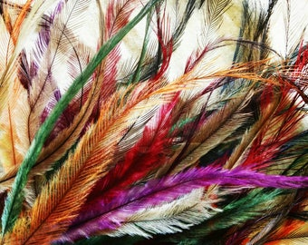 50 mixed hair feathers