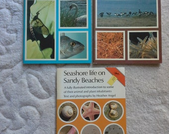 Jarrold nature series books - life in our rivers - life in our estuaries - seashore life on sandy beaches