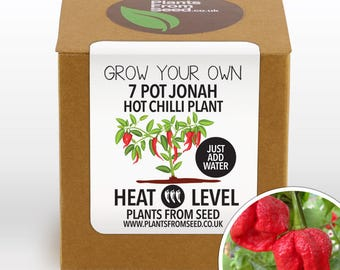 Grow Your Own Jonah Chilli Plant Kit