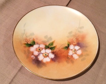 """Thomas Sevres Bavaria Hand Painted 6"""" Plate WILD whiteFLOWERS Gold Trim Signed on Front"""