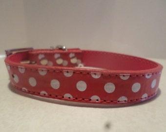 Cute Red & White Polka Dot Dog Collar  Leash Set!