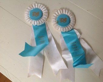 Vintage Horse Show Ribbon Aqua Blue White Equestrian Award Dressage