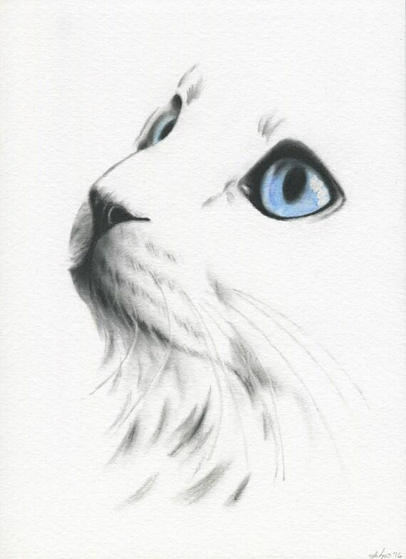 chat blanc aux yeux bleus chat croquis dessin de chat de. Black Bedroom Furniture Sets. Home Design Ideas