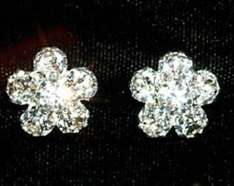 Cluster Rhinestone Earring #12244