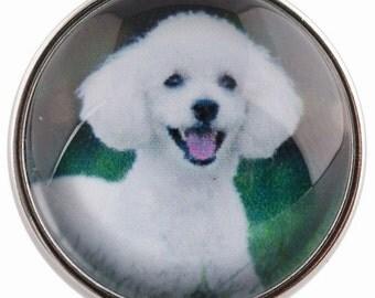 C0457 Poodle Art Glass Print Chunk