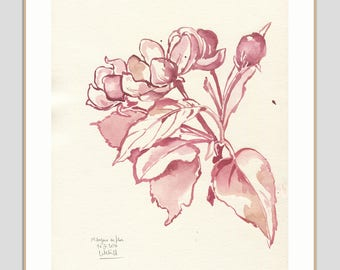 Apple blossom drawing - ORIGINAL pink monochrome ink drawing of apple flowers - Modern botanicals Floral  illustration by Catalina