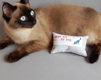 Grab Em By The . . . you know!  Catnip filled pillow cat toy.  Donald Trump inspired cat toy.