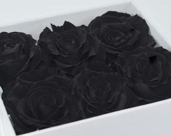 Black  Beauty Rose Gift Box