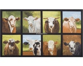 Cows Quilt Fabric Panel, Robert Kaufman Down On The Farm, 16512, Cow Fabric Panel, Farm Animal, Cheri Wollenberg, Sagebrush Fine Art, Cotton