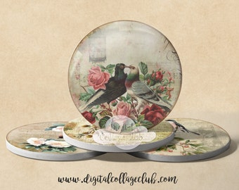 Vintage Birds Digital Collage Sheet Printable Shabby Chic Images for Coasters Greeting Cards Scrapbooking Decoupage Paper