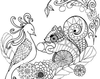 Coloring page, surprising friendship of a bird and a squirrel
