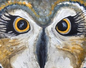 Owl Original Watercolor, ...
