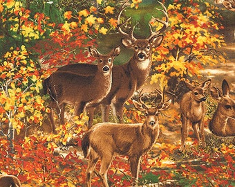 Timeless Treasures Deer in the Woods Autumn Gathering Fabric