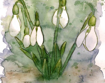 Giclee fine art print, Snowdrop, original watercolor print, optional framing, free shipping