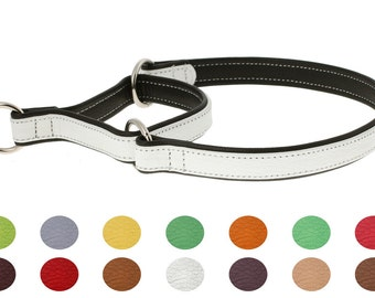 Premium Floater Leather Martingale Dog Collar Double Ply Training 12 Colors Size XS S M1 M2 L XL XXL Flat Durable Heavy Duty Pet Dog Fashion