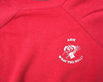 Vintage Sweatshirt, Poly Blend Sweatshirt, Fraternity Sweatshirt, Size Medium, 1980's