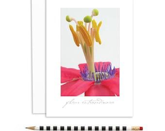 fleur extraordinaire, flower cards, passion flowers, unique flowers | A6-1119