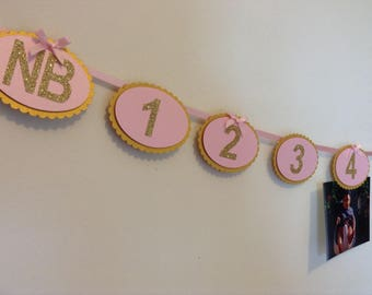 12 Month Photo Banner, 1st Birthday Photo Garland, Pink and Gold 1st Birthday, Pink and Gold Party Decor