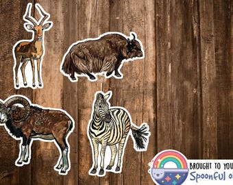Herbivore Animal Stickers - Zoology Sticker Set/Science Biology Stickers - Safari Animals Decor - Zebra, Bison/Buffalo - Animal Lover Gift