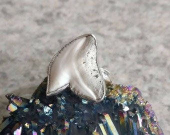 CLEARANCE* Shark Tooth Ring Size 10 1/2