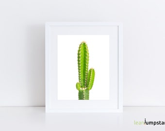 Wall Art Succulent, Cactus Decor, Printable Cactus, Cactus Art Print, Cactus Printable, Cactus Print, Cactus Wall Art, Succulent Wall Decor