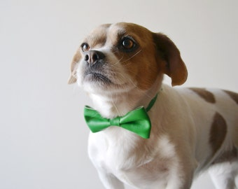 Green dog collar bow tie / Green leather bow tie for dogs / Leather dog bow tie