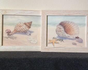 "Barbara Fleri ~ Pair of ""Seashells"" Fine Art Prints"