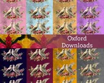 Scrapbook Paper, 8 x 8 , Dove Print, Clip Art, Cardmaking, Printable Art, Digital Download, Shabby Chic, St. Valentines, Victorian Art,Birds