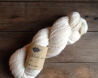 #4 - skein of yarn spun Falkland Falkland handmade, natural colours