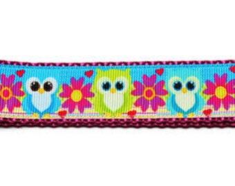 X-Large Cute Owls Dog Collar