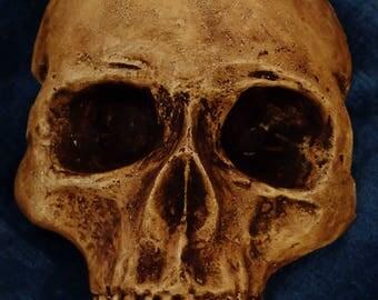 Vampire skull. Wall hanger