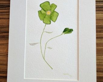 Fleur Vert
