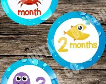Baby Monthly Milestone Markers Printable Instant Download Gender Neutral Ocean Sea Crab Fish Turtle Shark Octopus Starfish Lobster Boy Girl