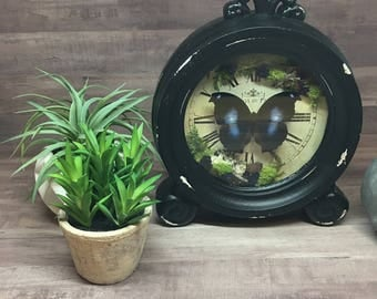 Re-purposed Clock with Great Blue Hookwing Butterfly