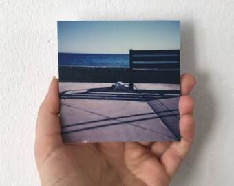 "MallorCATS no02 ""Madame"" - Polaroid print on ALU-Dibond 9 × 9, matt"
