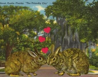 Cute Gift for Boyfriend, Girlfriend Gift, Funny Bunny, Love Bunny Rabbit Art, Animal Artwork, Original Collage, Romantic Gift