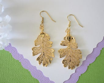 Gold Oak Leaf Earrings, Lacey Oak Leaf, Real Leaf Earrings , Oak Leaf, 24kt Gold, Nature, LESM176