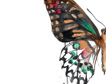 Butterfly drips, print from original watercolor and pen butterfly illustration by Jessica Durrant