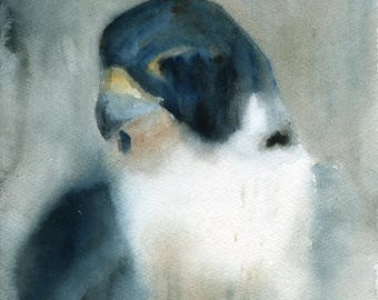 Peregrine falcon Original watercolor painting 8x10inch