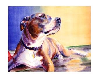 "16x20"" Pit Bull Dog Watercolor Art Poster Print [Pit Bull Painting Pit Bull Watercolor Pit Bull Print Pit Bull Art Pit Bull Art Print]"