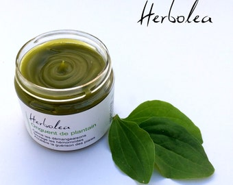 Plantain ointment, natural balm for itching, hemorroids, bug bite, wounds. Herbolea by Escale Nature, for sensitive skin or irritated skin
