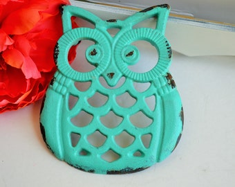 ON SALE Shabby chic turquoise kitchen decor cast iron Owl Trivet cottage chic under 20 Mother's day gift housewarming shower gift